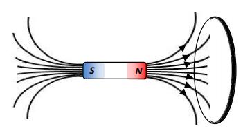 Figura 6. Espira circular e ímã.